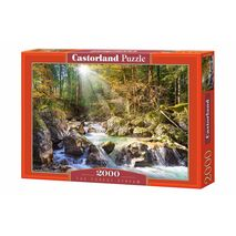 Castorland - The Forest Stream