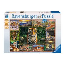 Ravensburger - Tiger