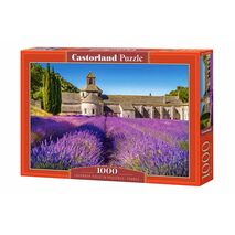 Castorland - Lavender Field In Provence, France