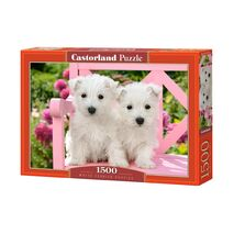 Castorland - White Terrier Puppies
