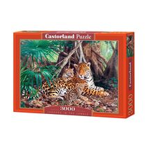 Castorland - Jaguars In The Jungle