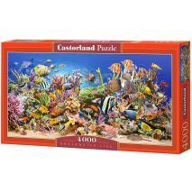 Castorland - Underwater Life