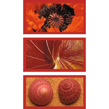 Ravensburger - Natural Impressions in Red